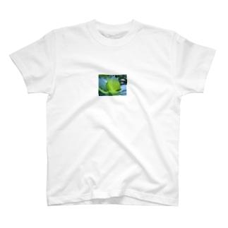 紫陽花の葉脈 T-shirts