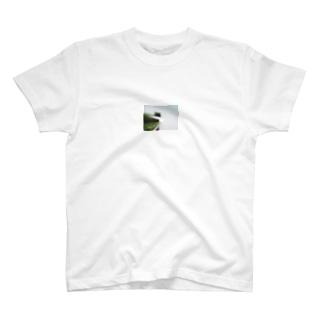 歯ブラシの虚像 T-shirts