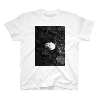 タイランドピコボール T-shirts