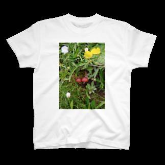 ゆきうさぎ工房のなかよしキノコ T-shirts