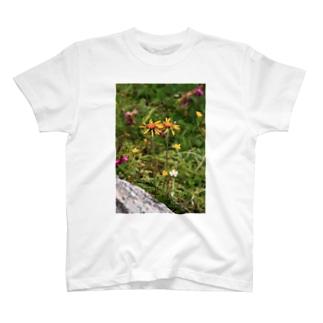 なかよしギク T-shirts