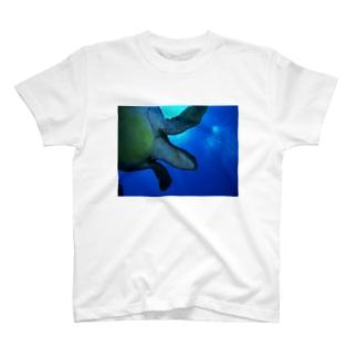 うみ(ウミガメ) T-shirts