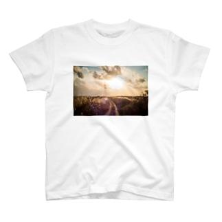 ススキ T-shirts