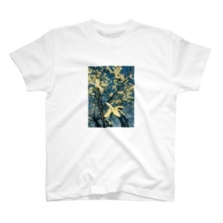 木蓮 T-shirts