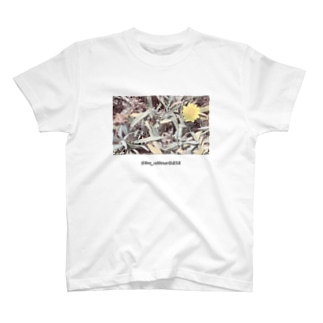@bo_nheur0414 T-shirts