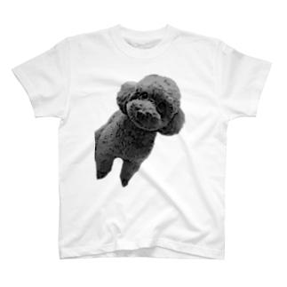 可愛いプードルちゃん T-shirts