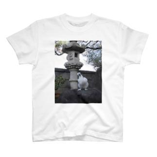 烏骨鶏のぷーちゃん T-shirts