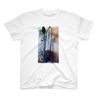 アリノストリデ(Hydnophytum formicarum) T-shirts