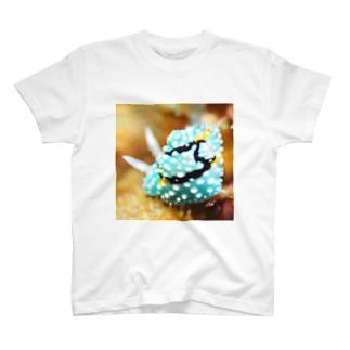 シモフリカメサンウミウシ T-shirts
