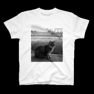 NAZOTOWNの池島の猫 Tシャツ