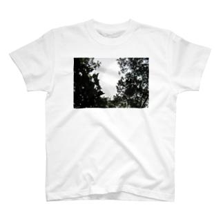 SA8030a T-shirts