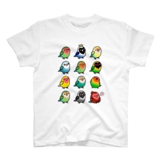 Chubby Bird ラブバード大集合 (コザクラインコ&ボタンインコ)  T-shirts