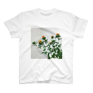 ベニバナ T-shirts