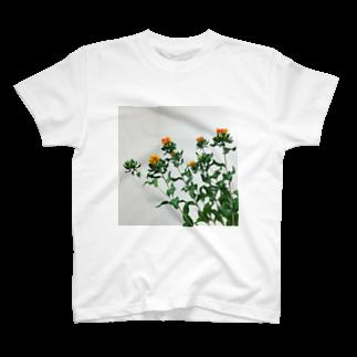 kirinorangeのベニバナ T-shirts