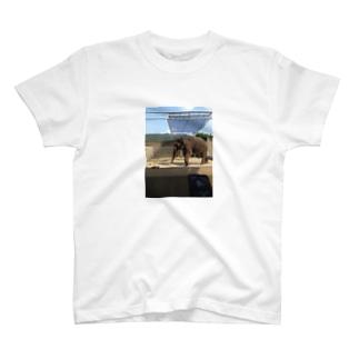 アジアゾウ T-shirts