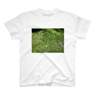 芝生 T-shirts