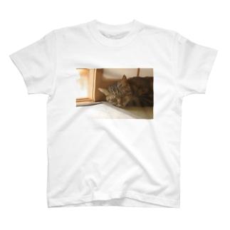 すやあ。 T-shirts