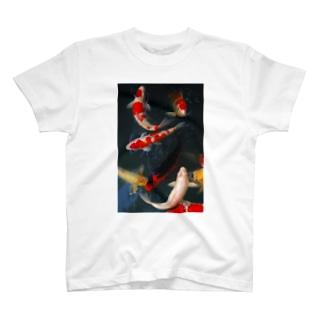 鯉 T-shirts