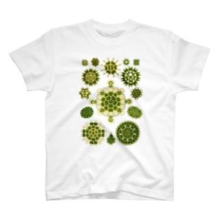 Kunstformen_Melethallia T-shirts