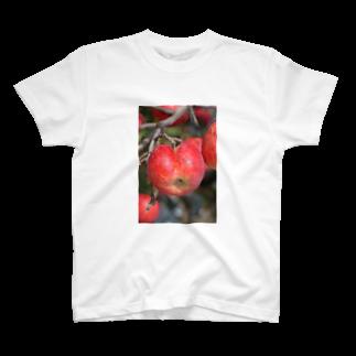 古川 曻一のお乙なリンゴ T-shirts