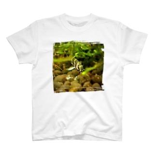 おそうじ大好きクーリーローチ T-shirts
