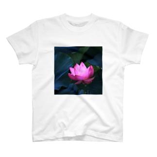 M.F.Photoのロータス T-shirts