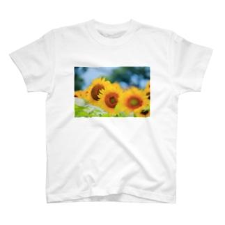 ひまわり畑 T-shirts