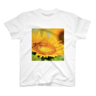 ひまわりとミツバチ Tシャツ