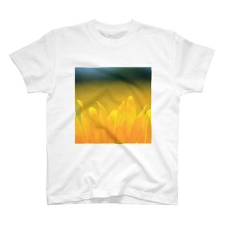 ひまわり(花びら) T-shirts