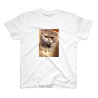 もきゅもも③ T-shirts