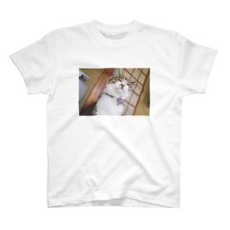 我が家の猫2 T-shirts