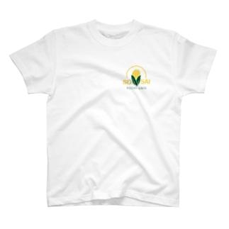 蔬菜研のTシャツ T-shirts