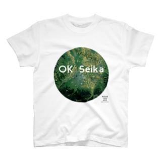 青森県 弘前市 Tシャツ T-shirts