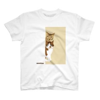 montan T-shirts