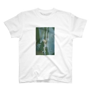 たろ T-shirts