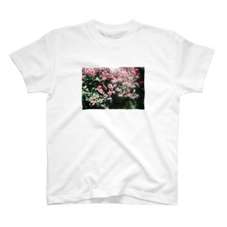 はな T-shirts