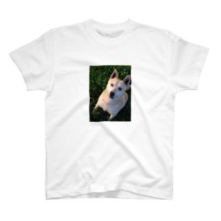 マロン♡マロン T-shirts