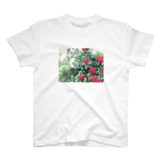 中央線中野で撮った花 T-shirts