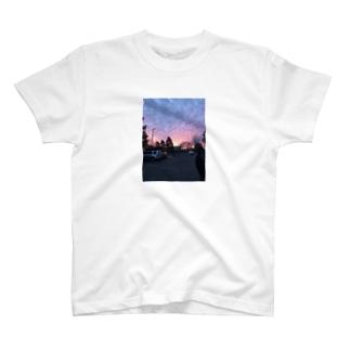 USA Phoenix T Shirt T-shirts