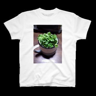 かいわれのかいわれTEE T-shirts