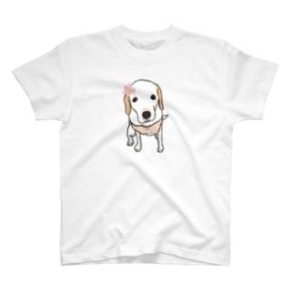 ジンジャーさん T-shirts