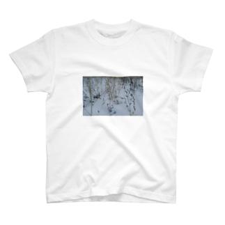 寒い朝 T-shirts