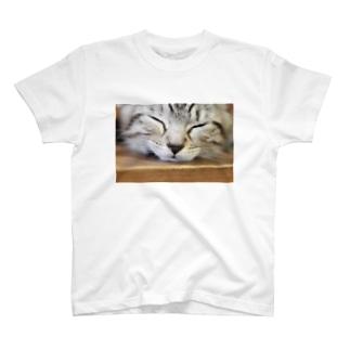 今日も今日とてルナ日和 T-shirts