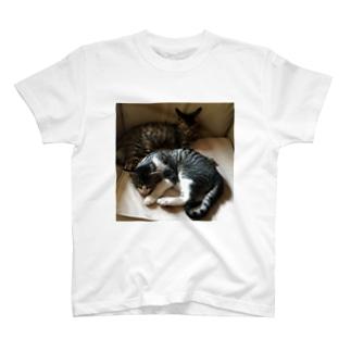 てすつ T-shirts