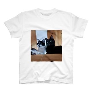 兄妹猫 T-shirts