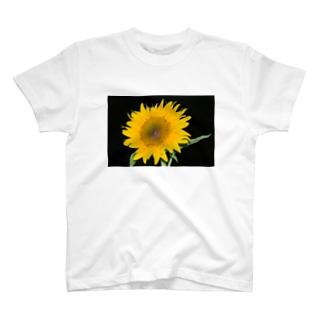 ひまわり Ⅱ T-shirts