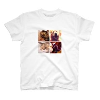 かわいい仲間たち T-shirts