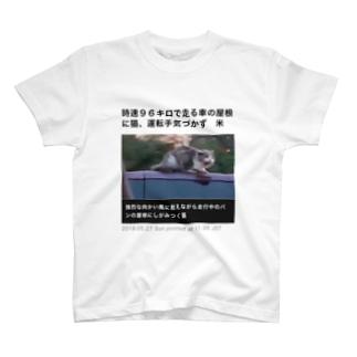 時速96キロで走る車の屋根に猫、運転手気づかず 米 T-shirts