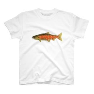 サツキマス Tシャツ