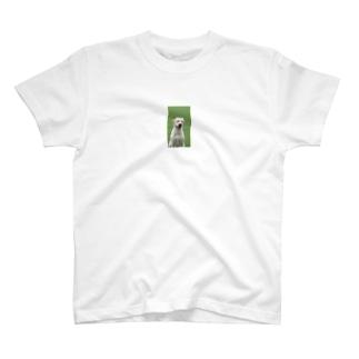 笑う犬 T-shirts